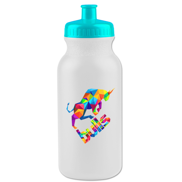 20 oz. Bike Bottle with Push-Pull Lid