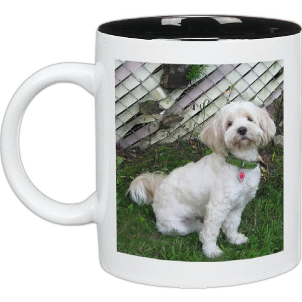 11 oz Color In/11 oz Color Rim & Handle White C Mugs
