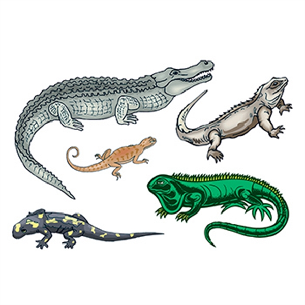Reptiles Set of Temporary Tattoos