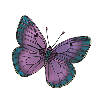 Purple and Green Butterfly Temporary Tattoo