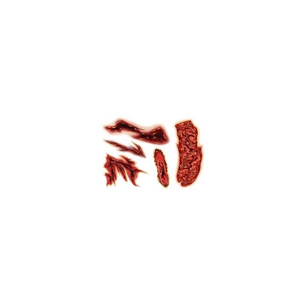 Gory Gashes & Wounds Temporary Tattoo