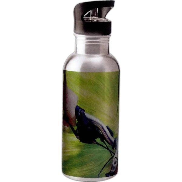 Full color stainless steel water bottle with straw - 20 oz